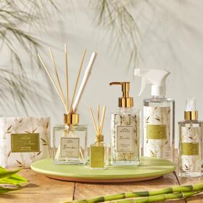 Coleção Bambu